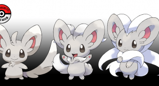 How to Find and Evolve Minccino into Cinccino in Pokémon Sword and Shield