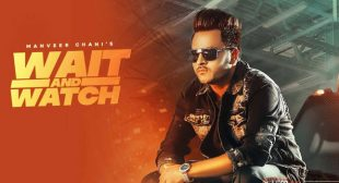 Wait And Watch – Manveer Chani